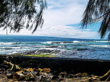 Hilo Bay Dreaming by Randy Sylvia