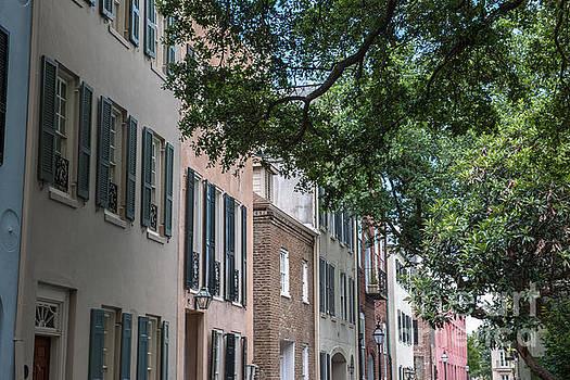 Dale Powell - Historic Charleston Architecture
