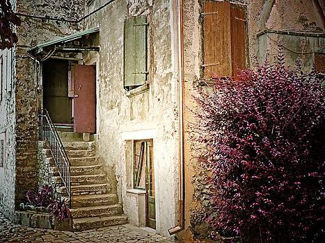 Historic Home - Rovinj, Croatia by Joseph Hendrix