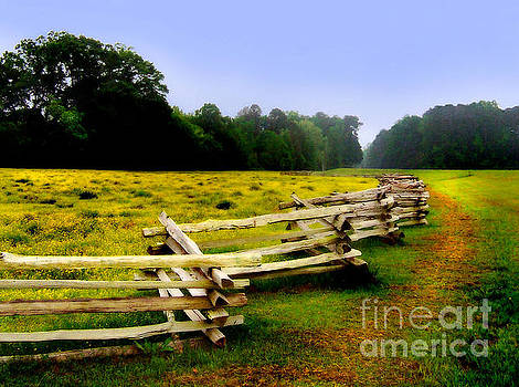 Historic Path Natchez Trace Parkway by T Lowry Wilson