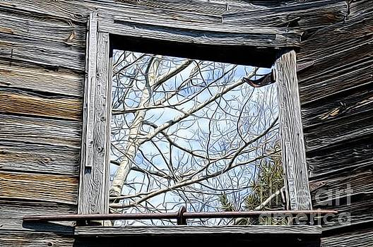 Historic Window by Sandra Updyke