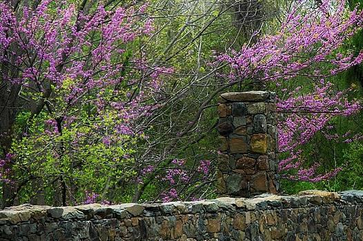 Historical Bridge in Aldie Virginia by Joyce Kimble Smith