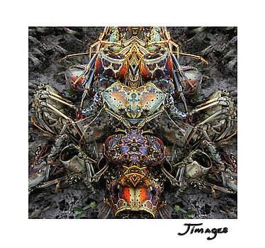 Hive Princess by Jim Austin Jimages