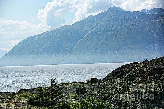 HiWay 1 Alaska  by Chuck Kuhn