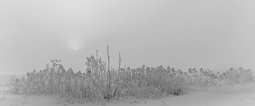 Dan Traun - Hoar Frost Sunrise