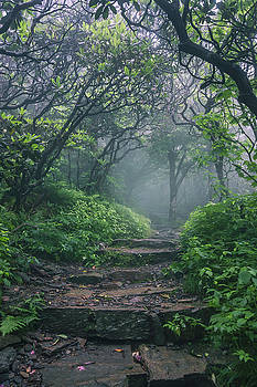 Hobbit Land by Dawnfire Photography