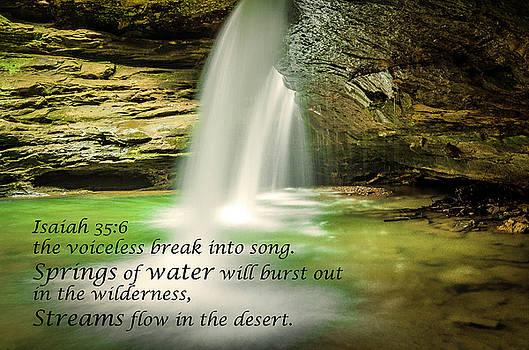 Hocking Hills - Isaiah 35.6 by Tom Clark