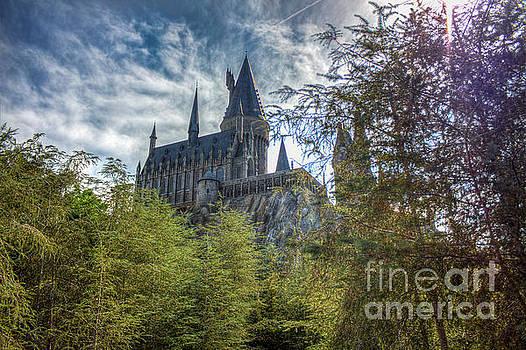 Hogwarts Castle by Luis Garcia
