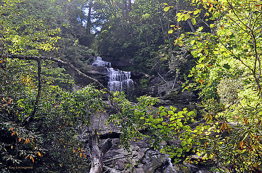 Kay Lovingood - Holcomb Creek Falls