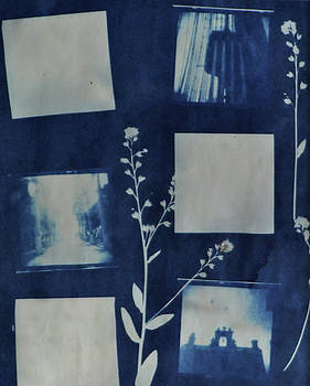Holga Negative Cyanotype by Lisa Shea