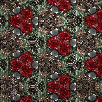 Holiday Kaleidoscope by Susan Ferency
