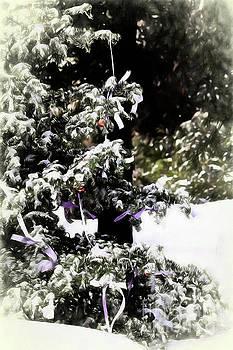 Holiday Pine by Pamela Moran