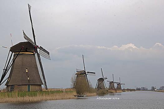 Holland by April Bielefeldt