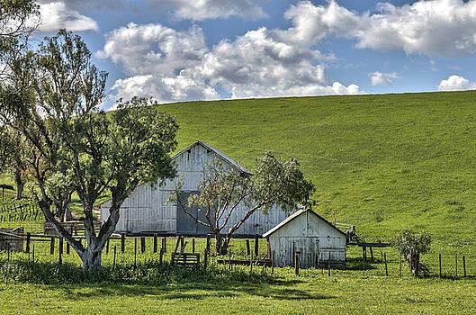 Bruce Bottomley - Hollister Barn
