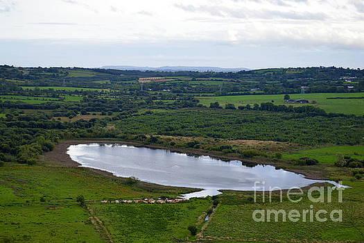 Joe Cashin - Holly Lake - Loch Cuileann