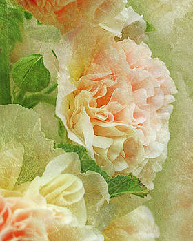 Hollyhock by Ann Lauwers