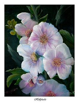 Hollyhock by Linda Mungerson