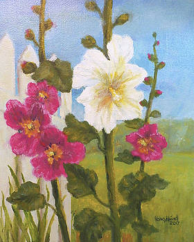Hollyhocks an oldfashioned favorite by Nancy Heindl