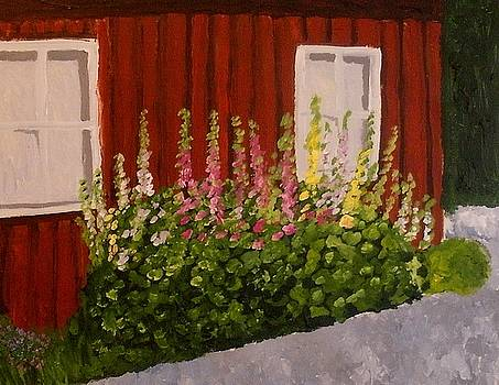 Hollyhocks by Mats Eriksson