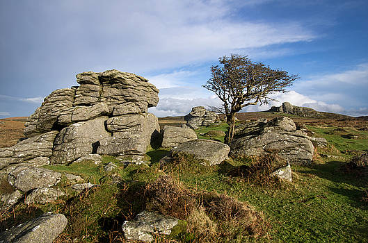 Holwell Tor on Dartmoor by  P Hemington