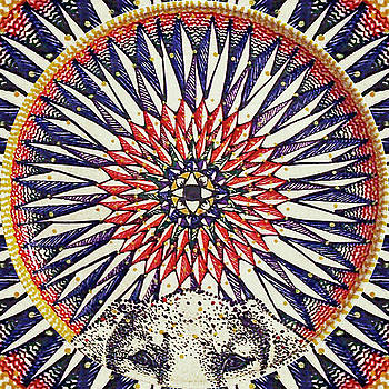 Holy Dog by Kym Nicolas