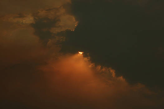 Holy Fire California - Hidden Beauty by Angela A Stanton