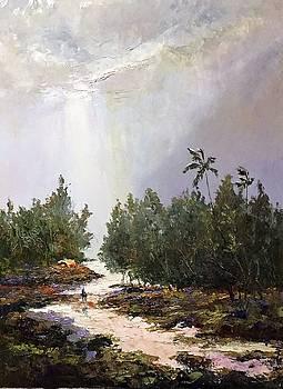 Home In The Rain by Ed Furuike