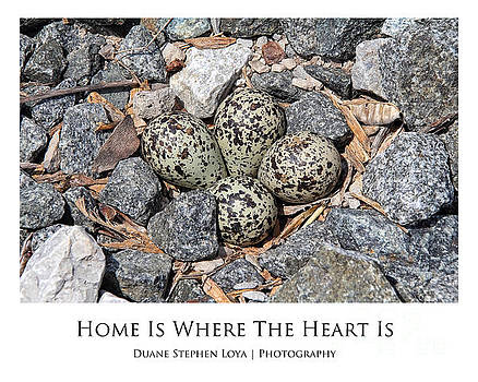 Home is Where the Heart Is by Duane Loya