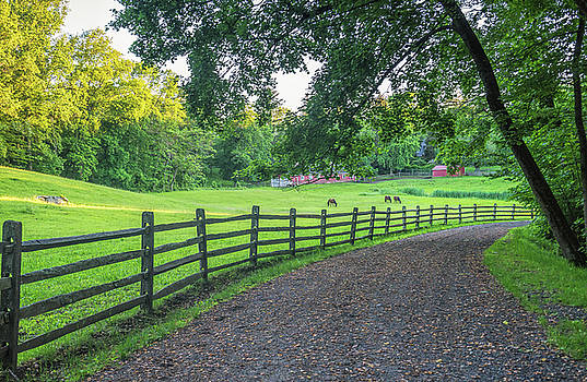 Home on the Range by Jeffrey Friedkin