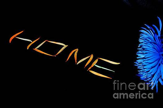 Home Sweet Home by Akshay Thaker