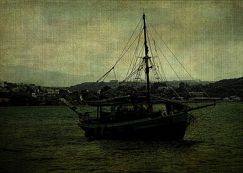 Homecoming Pirate by Sarah Vernon