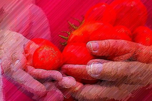 Homegrown Red Ripe Tomatoes by Lewis Lang