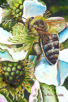 Honey Bee on Blackberry Blossom by Holly Michelle Hargus
