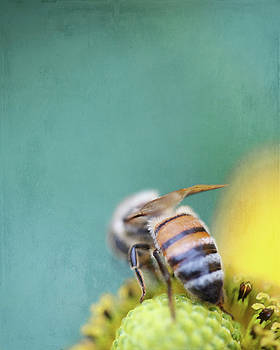 Honeybee on Teal Blue and Yellow by Brooke T Ryan
