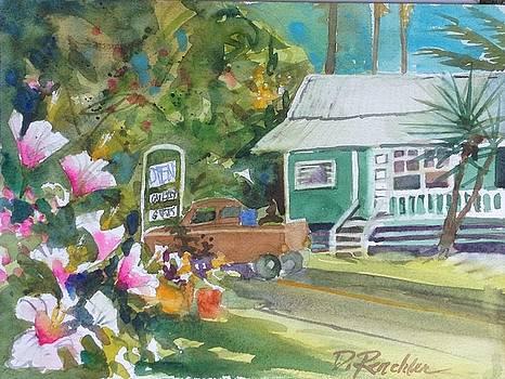 Honoka'a Hale by Diane Renchler
