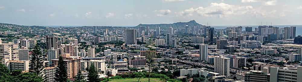 Daniel Hagerman - Honolulu Panorama
