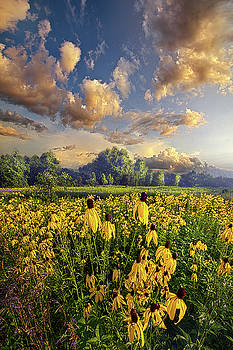 Honor All With Whom We Share The Earth by Phil Koch