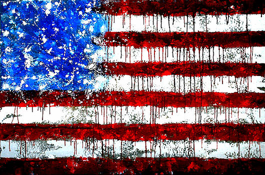 Valdecy RL - Honor And Glory United States Flag