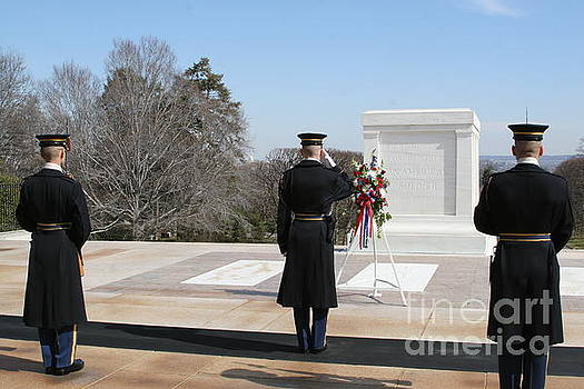 Honor Guard Saluting Tomb of Unknowns by April Sims