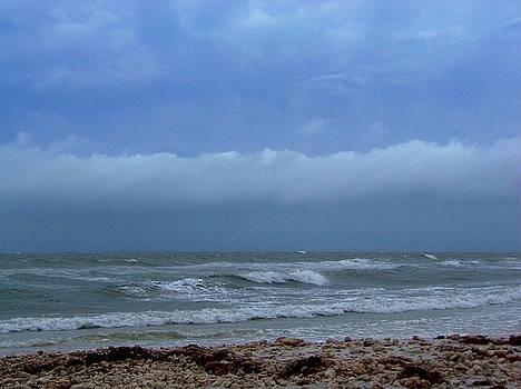 Honyemoon Island Stormy Beach by Chris Mercer