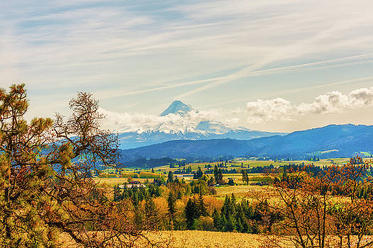 Hood River Valley and Mt. Hood by Dee Browning