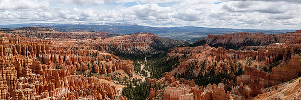 Hoodoos at Bryce Canyon by Georgette Grossman
