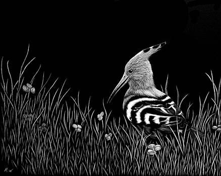 Hoopoe by Heather Ward