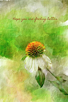 Hope you are Feeling Better by Mary Timman