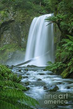 Hopetoun Falls by Howard Ferrier