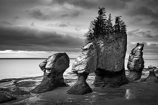 Hopewell Rocks by Patrick Downey