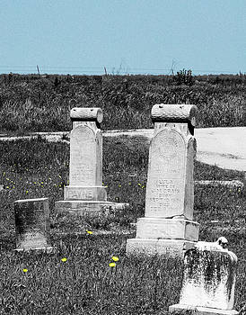 Hopping Cemetery by Amy Jo Garner