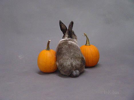 Alana  Schmitt - Hoppy Halloween