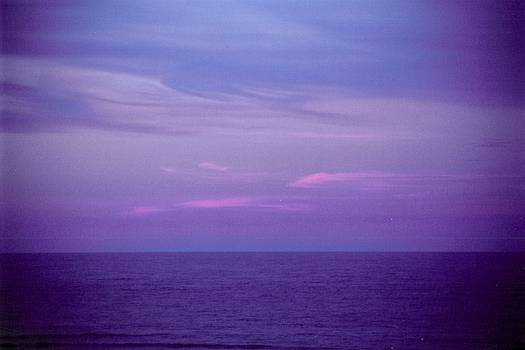 Horizontal Number 6 by Sandra Gottlieb