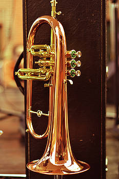 Horn by La Dolce Vita